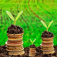 direito agrario credito rural wellington barros advogados