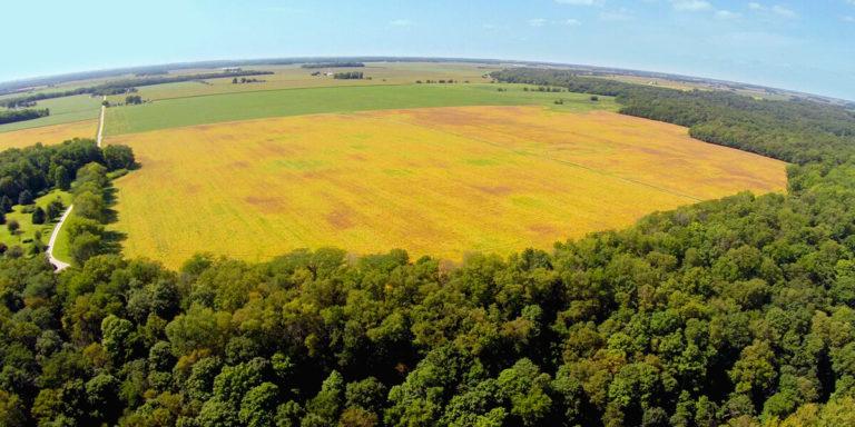 direito agrario versus direito ambiental wellington barros advogados associados