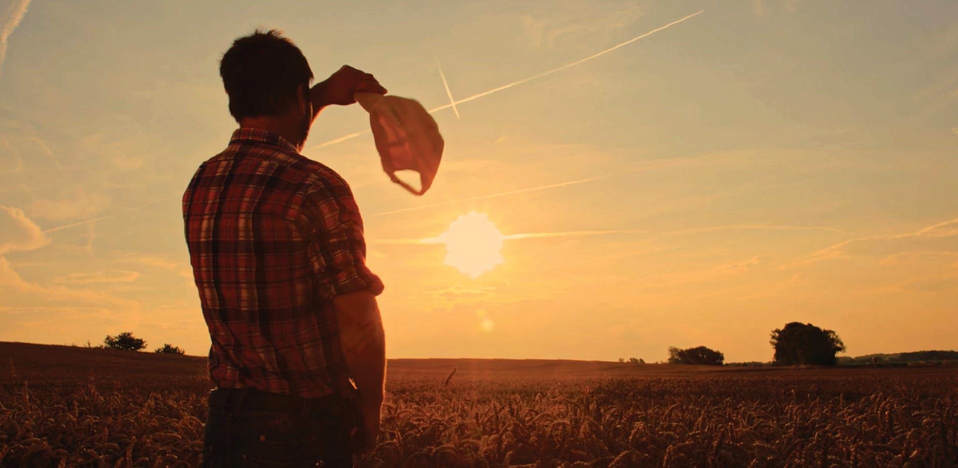 Estudos avançados sobre a Cédula de Produto Rural